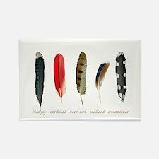 Nature Art Bird Feathers Magnets