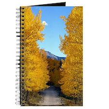 Aspens changing Journal