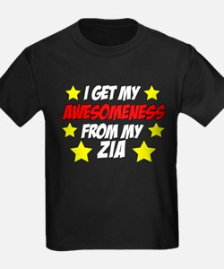 Awesomeness From Zia T-Shirt