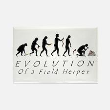 Evolution of a Field Herper Magnets