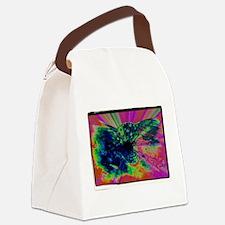 crazyeyeshrrom.jpg Canvas Lunch Bag
