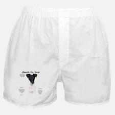 Smooth Fox Terrier Boxer Shorts