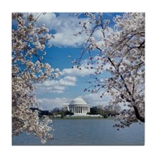 Jefferson Memorial with Cherry Blosso Tile Coaster