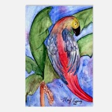 Pretty parrot Postcards (Package of 8)