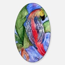 Pretty parrot Decal
