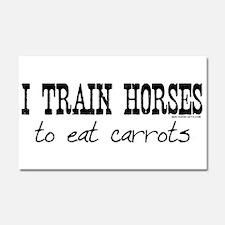 train horses apparel Car Magnet 20 x 12