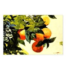 Oranges on a Branch; Wins Postcards (Package of 8)
