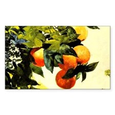 Oranges on a Branch; Winslow H Decal