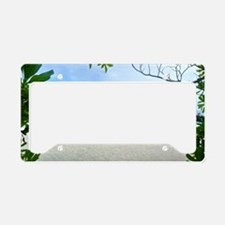 Beach Holiday License Plate Holder