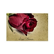 Love Forever, Deep Red Rose Rectangle Magnet