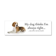 Beagle v Wife Car Magnet 10 x 3