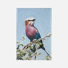 Lilac-breasted Roller Magnets