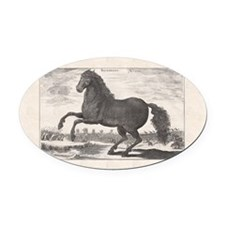 Alexander the Great's Horse Buceph Oval Car Magnet