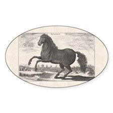 Alexander the Great's Horse Bucepha Decal