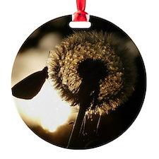Wonderful Dandelion Ornament
