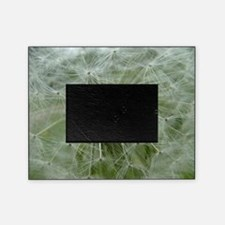 Wonderful Dandelion Picture Frame