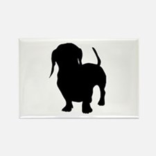 dachshund 2 Magnets