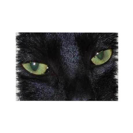 "Rectangle Magnet ""Miru - the naughty black cat"""