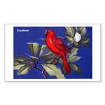 Northern Cardinal Bird Rectangle Sticker