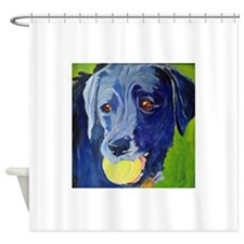 Play Ball a dog and his ball Shower Curtain