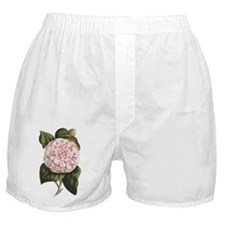 Countess of Derby Camelia Flower Boxer Shorts