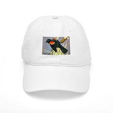 Red-Winged Blackbird Bird Baseball Cap