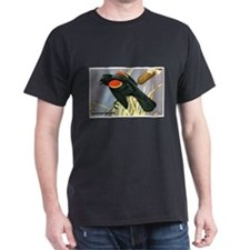 Red-Winged Blackbird Bird (Front) T-Shirt