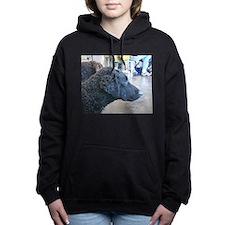 curly coated retriever Hooded Sweatshirt