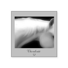 """Horse Theme Design #69999 Square Sticker 3"""" x 3"""""""