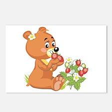 Teddy Bear Eating Strawberries Postcards (Package