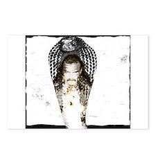 Jake Roberts Cobra Postcards (Package of 8)