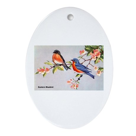 Eastern Bluebird Bird Oval Ornament