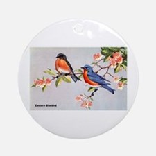 Eastern Bluebird Bird Ornament (Round)