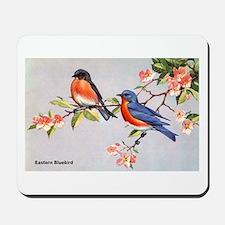 Eastern Bluebird Bird Mousepad