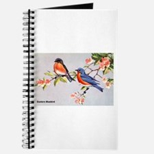 Eastern Bluebird Bird Journal