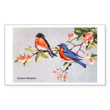 Eastern Bluebird Bird Rectangle Sticker