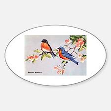 Eastern Bluebird Bird Oval Decal