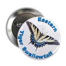 Eastern Tiger Swallowtail Butterfly Button