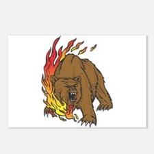 Flames and Grizzly Bear Design Postcards (Package