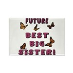 Future Best Big Sister! Rectangle Magnet (10 pack)