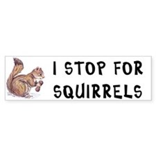 Stop for Squirrels bumper sticker