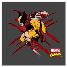 Wolverine Scratches Wall Art Poster