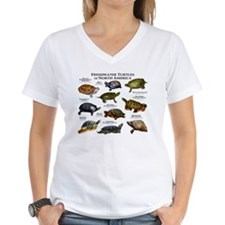 Freshwater Turtle of North Shirt