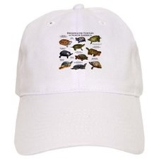 Freshwater Turtle of North America Baseball Cap