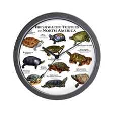 Freshwater Turtle of North America Wall Clock