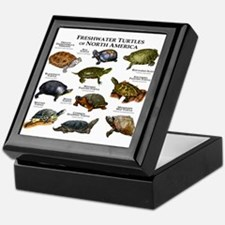 Freshwater Turtle of North America Keepsake Box