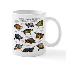 Freshwater Turtle of North America Small Mug