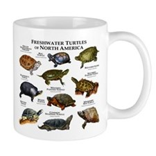 Freshwater Turtle of North America Small Mugs