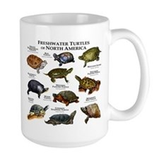Freshwater Turtle of North America Ceramic Mugs