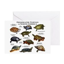 Freshwater Turtle of North America Greeting Card